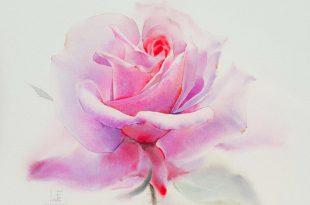 LaFe Watercolor Artist Thiland